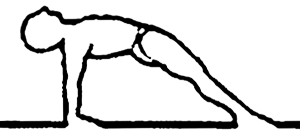 Purvottanasana, em desenho por John Scott