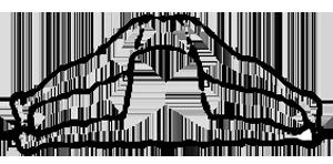 Supta konasana, a postura do ângulo em repouso, em desenho por John Scott