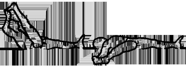 Supta padangusthasana, a postura do polegar ao pé em repouso, em desenho por John Scott